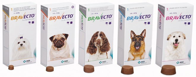 Get your Bravecto for cheaper